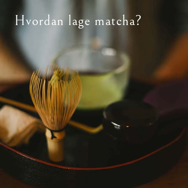Hvordan lage matcha? Sjekk vår guide her!