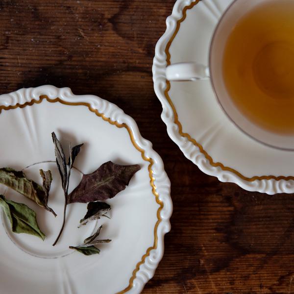 Vintage Peon, teblader og brygg